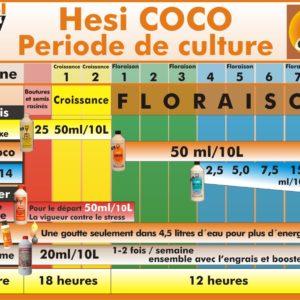 HesiCOCO.jpg